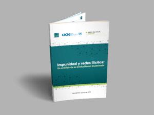 Informe Impunidad y Redes Ilícitas